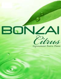 Räuchermischung Bonzai Citrus 3g