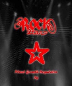 Rockstar Räuchermischung