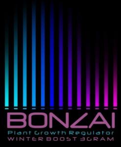 Bonazi Winter Boost Raeuchermischung