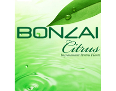 Räuchermischung Bonzai Citrus grid